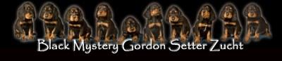 Blackmystery Gordon Se...