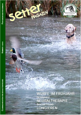 Titelbild: Q-Pino of Meadow's Brook auf der Entejagd